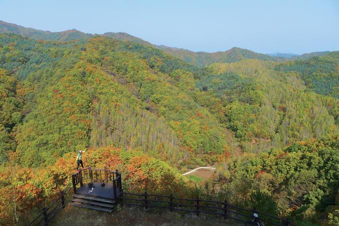 한반도 지형을 닮은 자작나무숲 전망대에서. 사람이 가리키는 오른쪽 산줄기의 숲이 한반도가 길게 누운 모습과 비슷하다.