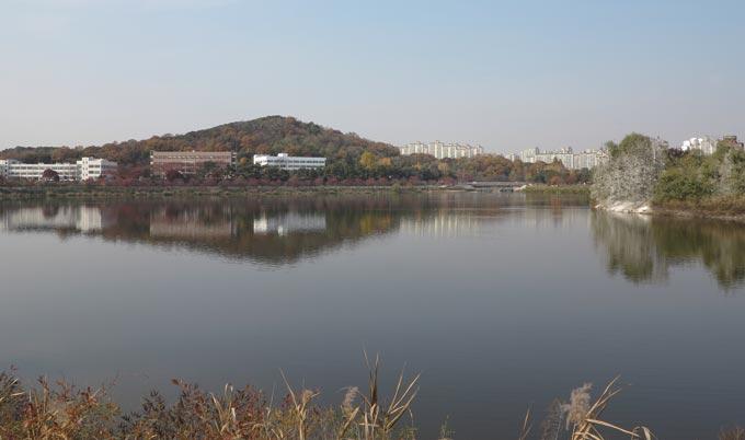 서호의 물그림자로 비친 여기산과 농촌진흥청