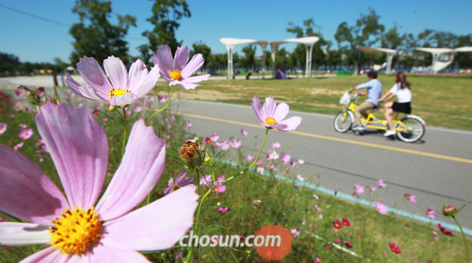 자전거 동호회 등 단체에 가입해 함께 모여 달리다 보면 지루하지도 않고, 다양한 사람들과 친분을 쌓을 수도 있어 즐겁게 여가 생활을 할 수 있다.