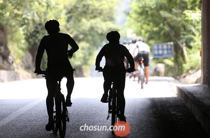 자전거를 타고 반대 방향으로 달리는 것은 목숨을 내놓고 운전하는 것과 마찬가지다.
