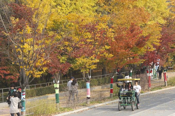 서울 올림픽공원에서 단풍을 즐기고 시민들