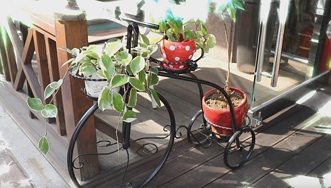 자전거 마니아들의 소통의 공간 '노란 자전거'(동영상취재 임정환PD)