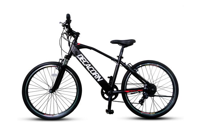 언덕길 주행 테스트에 사용된 알톤스포츠의 전기자전거 '데카콘 26인치'