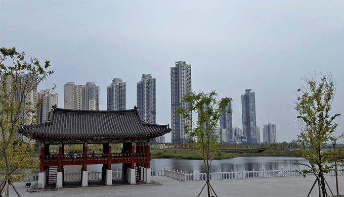 청라루와 고층빌딩이 호수를 사이에 두고 묘한 대비를 이룬다