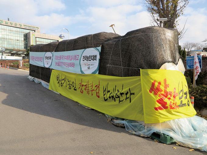 함평군청 입구에 쌓인 쌀가마 시위. 농민과 쌀값의 함수관계로 12월은 온 나라가 출렁거린다(함평읍)