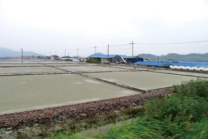 대기리 서울염전. 창고가 도열한 거대한 규모다