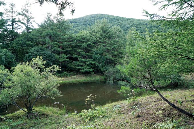 주능선 바로 아래에 있는 아롱이연못. 작고 얕지만 묘한 신비감이 감돈다.