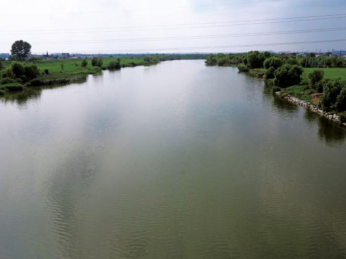 군문교에서 바라본 안성천 물길은 거의 제자리걸음이다.(평택 원평 )