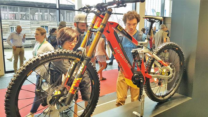 유럽에서는 특히 산악용 전기자전거의 인기가 높다