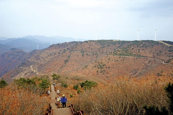 '철쭉 도깨비숲'에서 바라본 동북릉의 풍력발전소