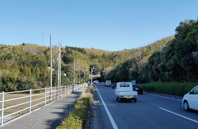 시코쿠 동해안을 지나는 55번 국도. 길가에 자전거도로가 잘 나 있다.