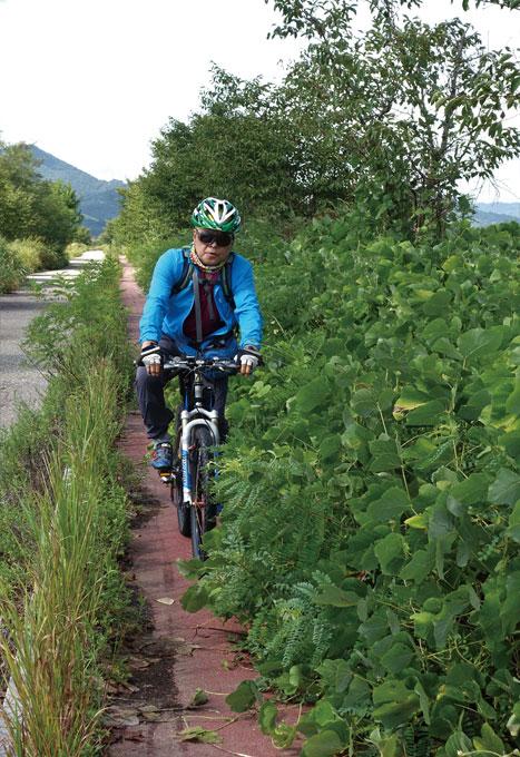 이 한가한 강둑길을 굳이 자전거와 차를 나누어 색칠한 관청은 무슨 생각을 하였을까.(광주 광산)