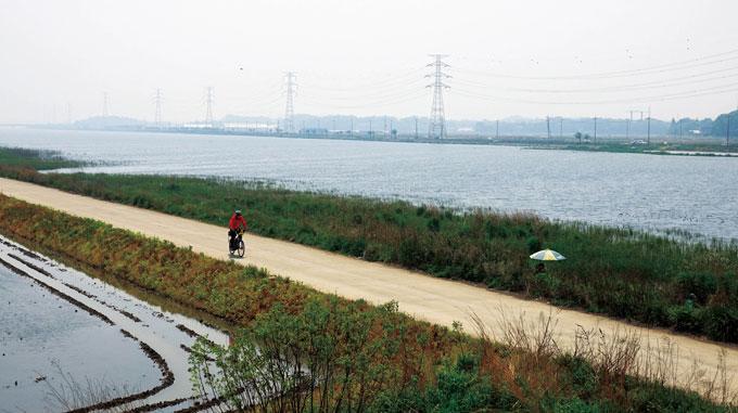 남양호 남안 길. 평택시흥고속도로가 지나는 남양호교 부근으로 폭은 400m 이내로 줄어들었지만 봄날의 수량이 풍부하다. 낚시꾼의 파라솔은 갈대밭에 파묻혀 길은 외줄기 적막강산이다.
