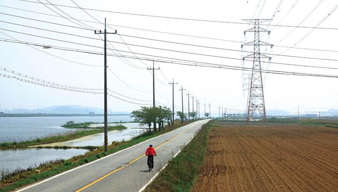 남양호 북안의 아스팔트 도로. 아득히 도열한 거대 철탑은 남양방조제 남단의 평택화력발전소 전기를 내륙으로 전하는 송전탑이다.