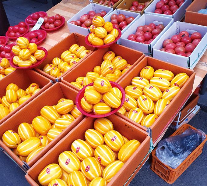 제천은 일교차가 크고 기온이 적당해 과일의 당도가 높다. 사과와 더불어 참외, 토마토도 맛있다.